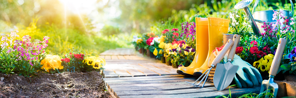 slide1-latitude-services-jardinage-senior